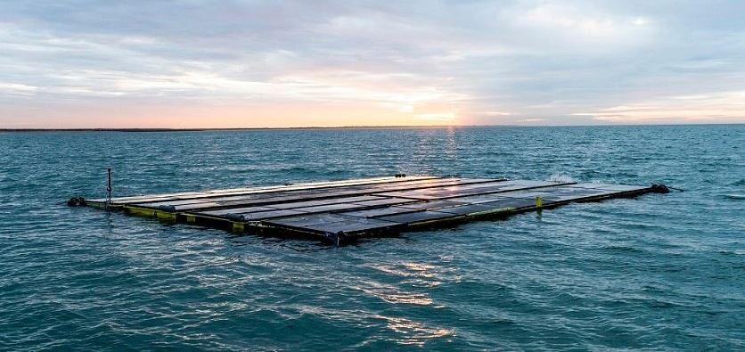 Energía solar y algas marinas, juntas en el mar por primera vez