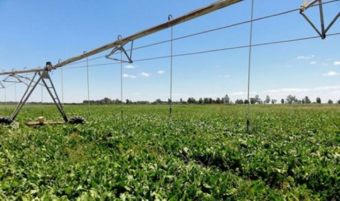 Abierto el plazo para solicitar las ayudas de eficiencia energética para el sector agropecuario y de regadío